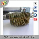 Spijker van de Rol van de Verkoop van China de Hete voor de Prijs van Pallets met Beste Kwaliteit
