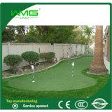 Synthetisch Gras voor de Cursus van het Golf