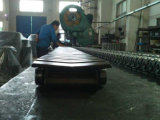 Mill en acier Salt Conveyor Roller Engineering Chain pour Metallurgy Industry