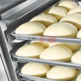 Doppi portelli 32 serbatoi di putrefazione francesi del pane dei cassetti piccoli da vendere (ZBX-32)