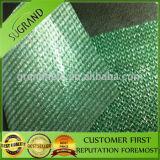 Vente en gros 100% imperméable à l'eau de réseau d'ombre de HDPE de Vierge