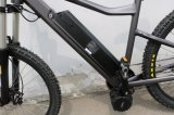 Lihtium batteriebetriebenes elektrisches Fahrrad