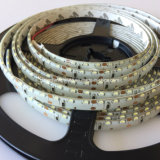 Indicatore luminoso di striscia di SMD 3014 LED