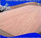 Mejor calidad comercial 1220 * 2440mm Plywood ordinario