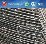 金網20年のに命綱の電流を通された鋼鉄層のケージ