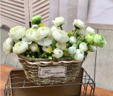 (BC-SF1011) Популярная Handmade естественная корзина цветка сторновки