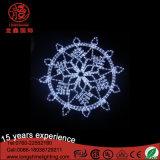 Flocon de neige de DEL modelant des décorations d'arbre de Plam de Noël de bande de lumières