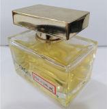 Advertentie-P10 Fles van het Parfum van het Glas van de gift de Speciale Vierkante 100ml 25ml
