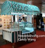 Chariots de Popsicles/congélateurs /Showcase crême chariot à bâton/glacée à vendre