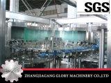 Frucht-Fleisch-Massen-Saft-Füllmaschine