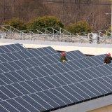 250W 255W 260W 265W 270W 275W 300W 305W 310W 315W un comitato solare da 320 watt