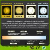 E12 6W 120V 180 정도 온난한 백색 60 와트 동등한 LED 초 전구