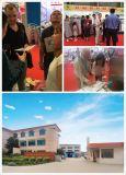 Yangtian heißer Verkaufs-Stickstoff-Generator mit Cer und TUV-Bescheinigung