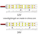 SMD1210 (3528) 방수 IP66 실리콘 관 240LEDs 12V LED 지구