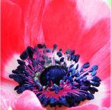 Mooi tot bloei komen nam de Druk van het Canvas met schittert voor Decoratie toe
