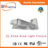 315W 디지털 CMH/HPS 밸러스트 315W 램프 또는 반사체는 전등 설비를 증가한다
