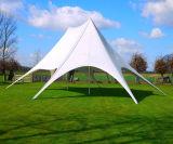 Double tente maximale d'étoile de qualité utilisée pour la publicité