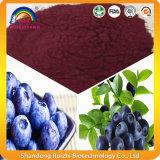 Extrato altamente concentrado da uva-do-monte das extrações