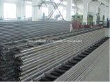 Луч трапа лесов стальной для конструкции