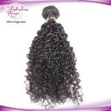 O cabelo por atacado empacota o cabelo malaio Curly da extensão do cabelo humano de 100%