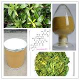 estratto del foglio della senna 20%Sennosides per il supplemento di erbe