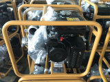 Pompa ad acqua centrifuga standard del Ce, pompa dello spruzzo della stazione di servizio di agricoltura per l'azienda agricola