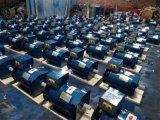 Hight Qualitätsniedriger Preis-Drehstromgenerator-einphasiges, Options-Spannung: 110V/220V