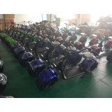 велосипед безщеточного мотора батареи лития места 1000W 1/2 электрический (SZE1000S-3)