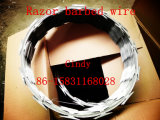 Fechtender/heißer eingetauchter Rasiermesser-Stacheldraht Rasiermesser-Stacheldraht