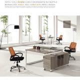 Bureau pour le personnel de compagnie les meubles de bureau de bureau de personnel de Tableau d'ordinateur