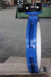 Полная клапан-бабочка раздела PTFE Coated u с ISO Wras Ce одобрила (CBF04-TU01)