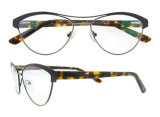 Blocchi per grafici poco costosi degli occhiali dell'annata degli occhiali del progettista