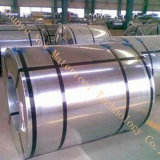 Gi-Stahlring galvanisierter Stahlblech-galvanisierter Ring