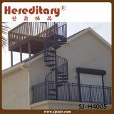 Scala esterna del cavo/fune dell'acciaio inossidabile per la decorazione (SJ-H4005)
