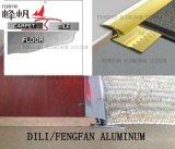 Testo fisso di alluminio della moquette per laminare pavimentazione con la coperta