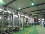 Fabricante grande de la máquina de la planta del jugo del mango en China