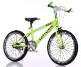 """20 """"  Bicicleta das crianças da bicicleta da montanha do estudante da bicicleta dos miúdos"""