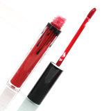 Lucentezza autentica brandnew dell'orlo di 8 colori dell'orlo del kit del rossetto liquido caldo della fodera