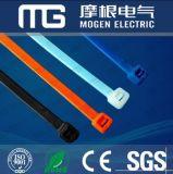 Ce de nylon RoHS Smeta das cintas plásticas da alta qualidade