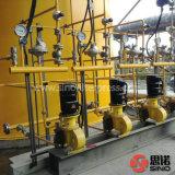 급수정화를 위한 산업 미터로 재는 펌프