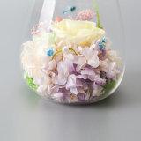La costellazione ha conservato il fiore in vetro per il regalo