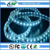 물 광도 유연한 LED 밧줄 빛 IP68의 밑에 높은 볼트