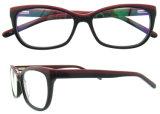 De met de hand gemaakte Optische Frames van de Oogglazen van Eyewear van de Acetaat Italiaanse
