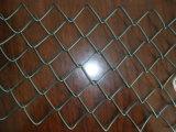 PVC上塗を施してあるチェーン・リンクの塀の/Chainリンク塀の金網