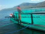 HDPEのケージの水産養殖、水産養殖の農場、水産養殖の浮遊ケージ