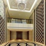 Pas Geplaatste de Slaapkamer van de Toevlucht/het Moderne vijfsterrenMeubilair van het Hotel van de Herberg Hampton aan