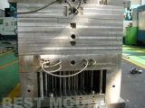 Moulage par injection en plastique de précision professionnelle de la Chine (WBM-2013020)