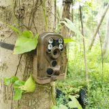 2016 piccola macchina fotografica della traccia di visione notturna della nuova di modo 12 di Megapixel mini macchina fotografica di caccia