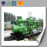 50-600kw Biogas Generator/Power Generation 세륨 ISO Approved Animal Waste 중국 Manufacture