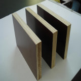Película Phenolic madeira compensada enfrentada do molde da madeira compensada